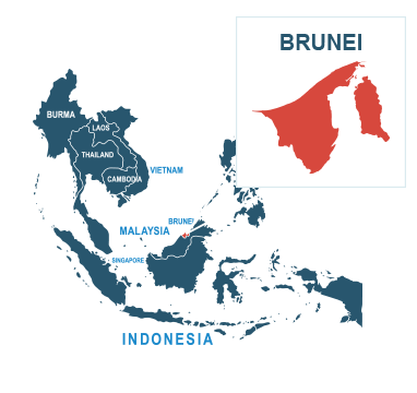 Parcel delivery to Brunei