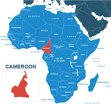 Parcel delivery to Cameroon