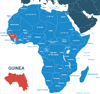 Parcel delivery to Guinea