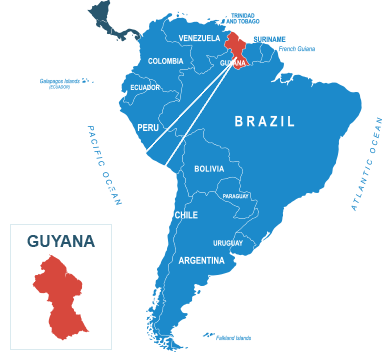 Parcel delivery to Guyana