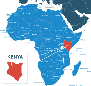 Parcel delivery to Kenya