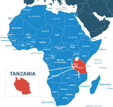 Parcel delivery to Tanzania